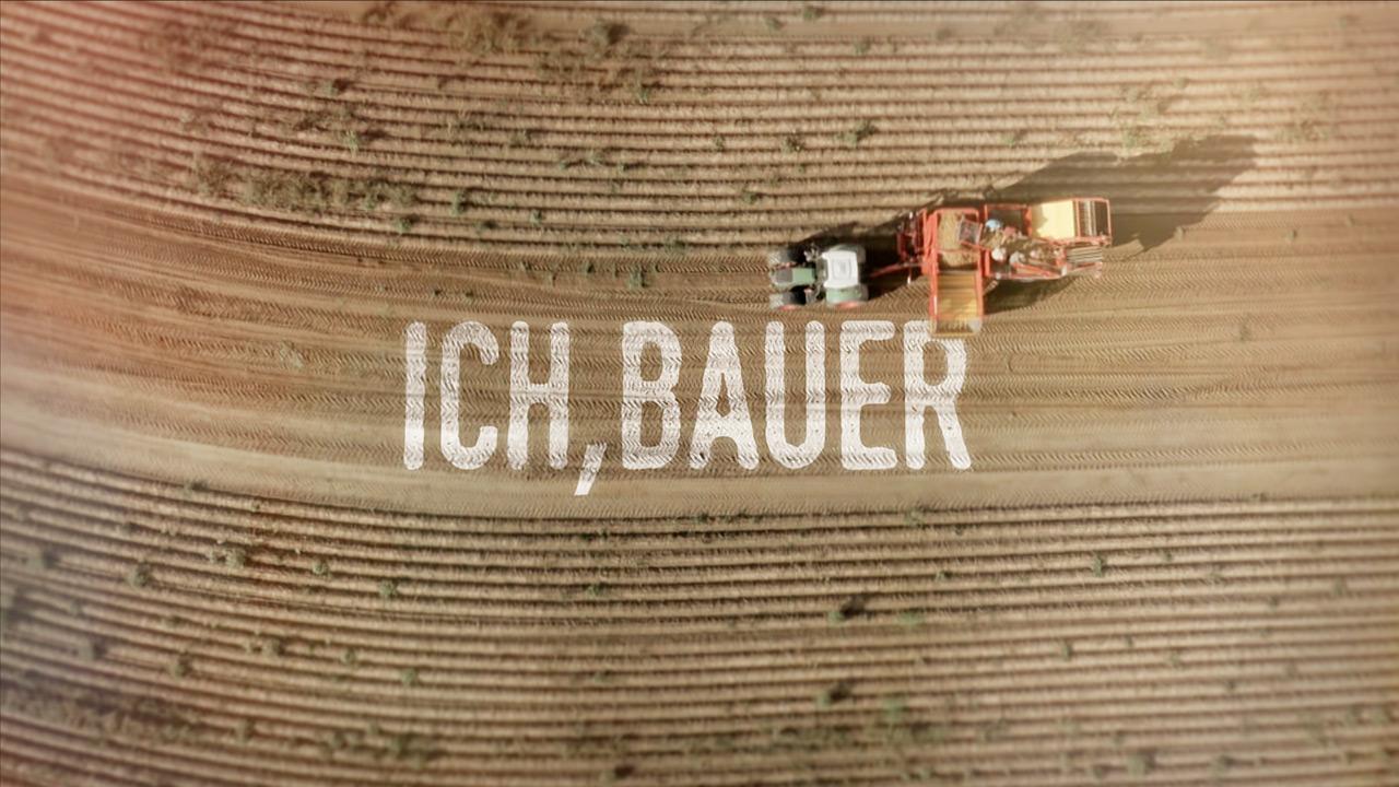 Ich Bauer - Motion Design